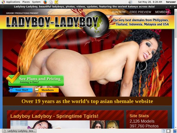 Ladyboy Ladyboy Pass Free