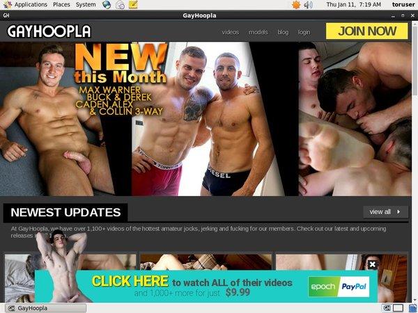 Gayhoopla.com Discount
